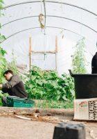 Back pain in gardening